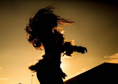 Danseres inhuren